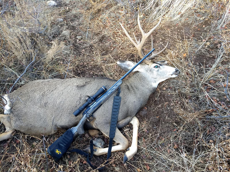 Dallen's buck with his X-Bolt 300 WSM.