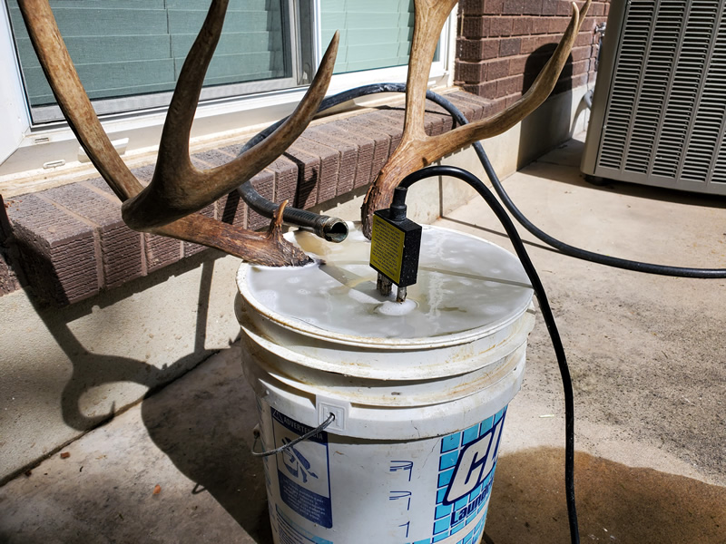 Bucket Heater European Skull Mount